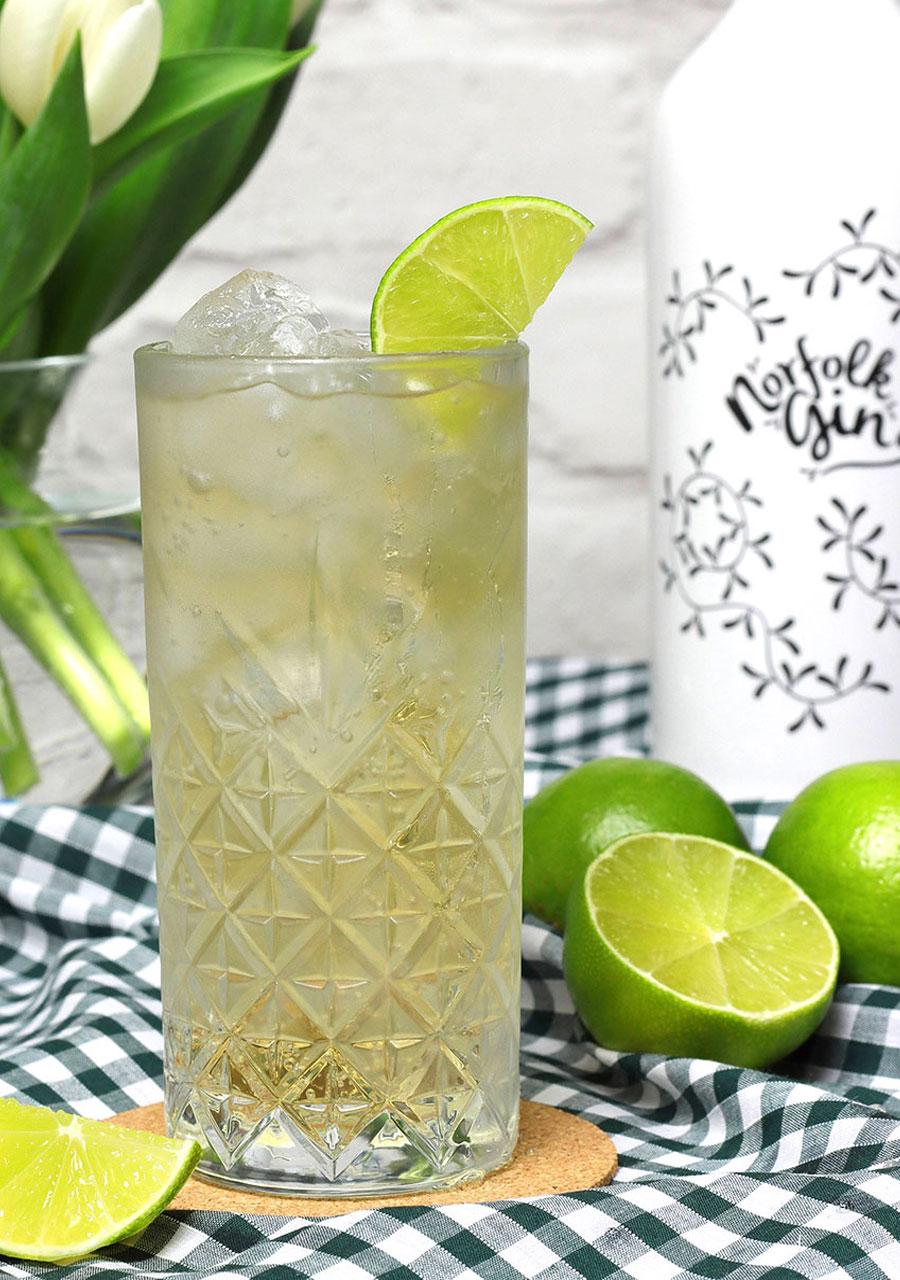 Norfolk Gin Mule
